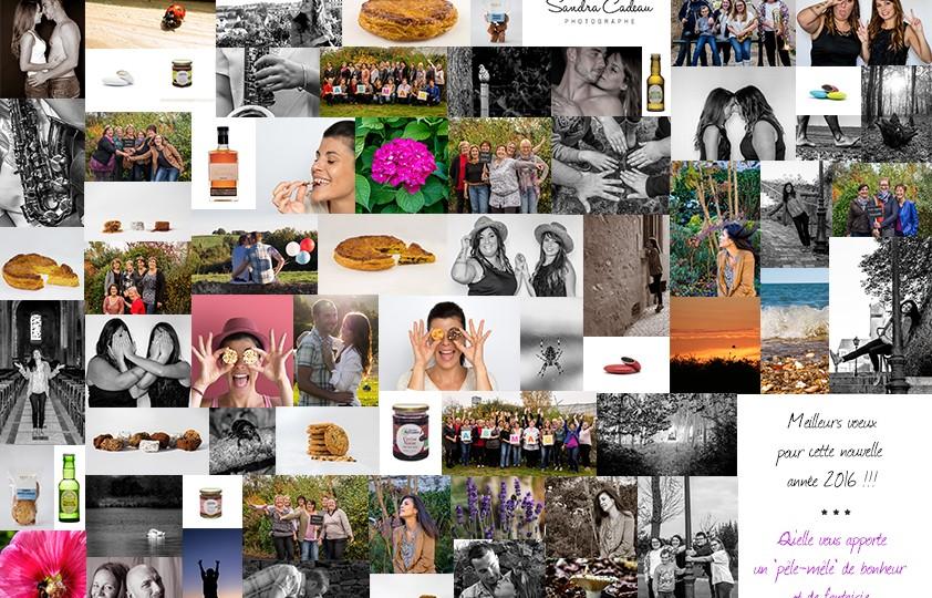 Pêle-mêle de photos réalisées en 2015 comme carte de voeux